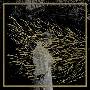 Forest Swords – Engravings (Tri Angle)